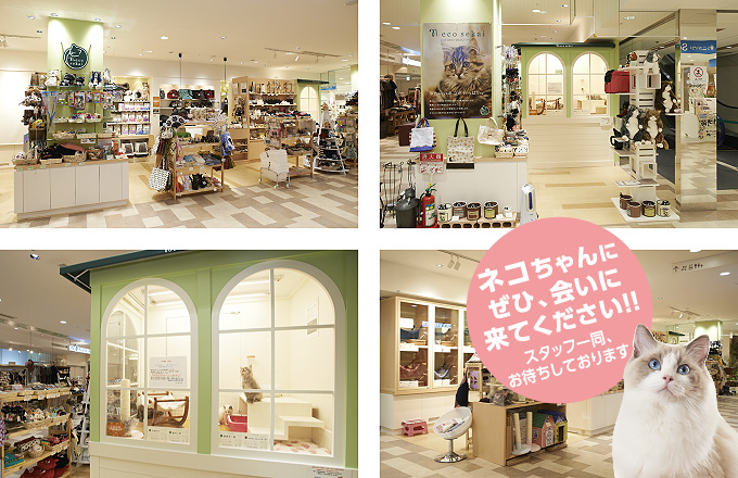 ネコセカイ コピス吉祥寺店