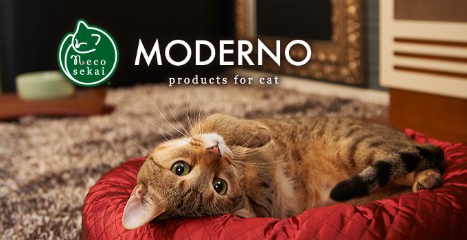 MODERNOモデルノ